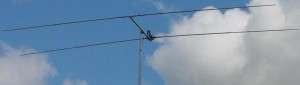 15 meter antenna